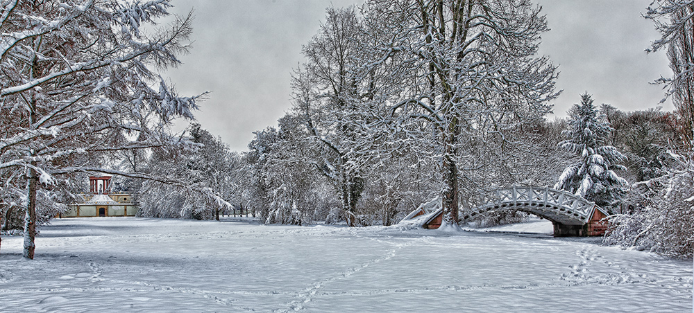 Winter im Schlossgarten II