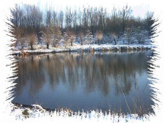 Winter im Schollebos
