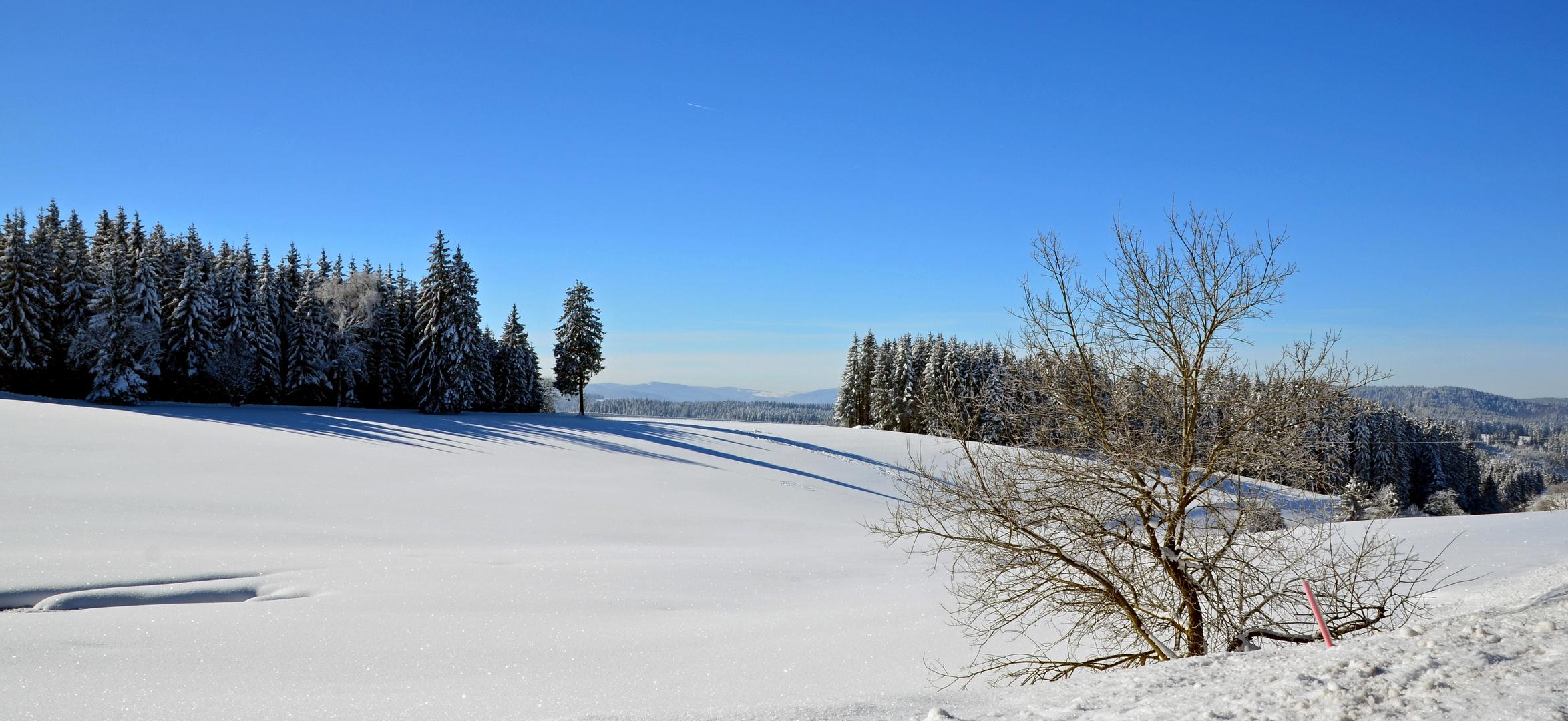 """""""Winter im Schwarzwald"""""""