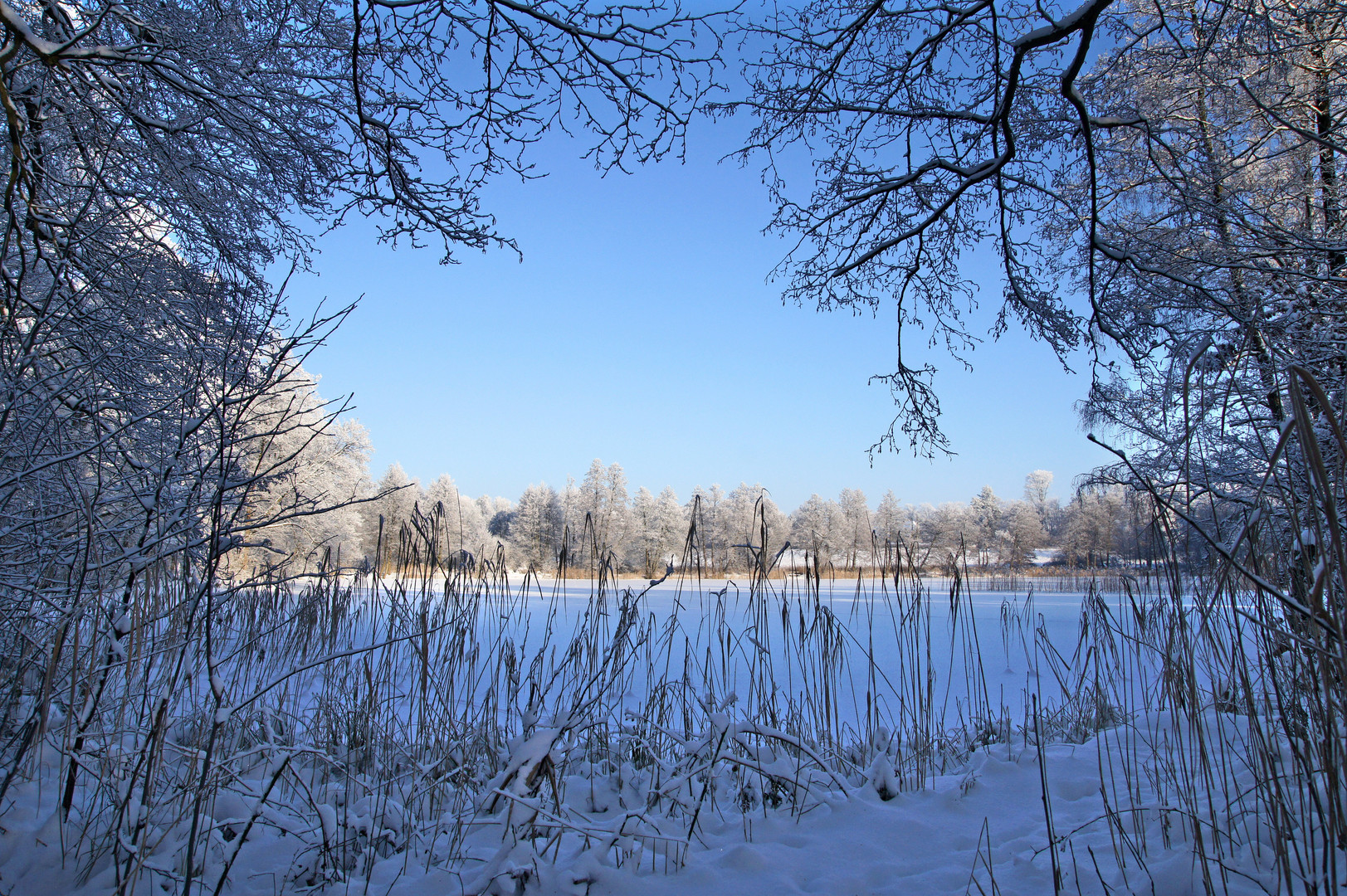 Winter im Slater Moor 2