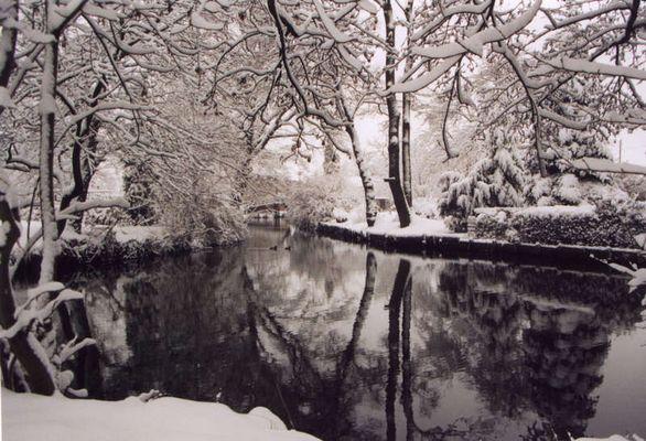 Winter im Unterspreewald