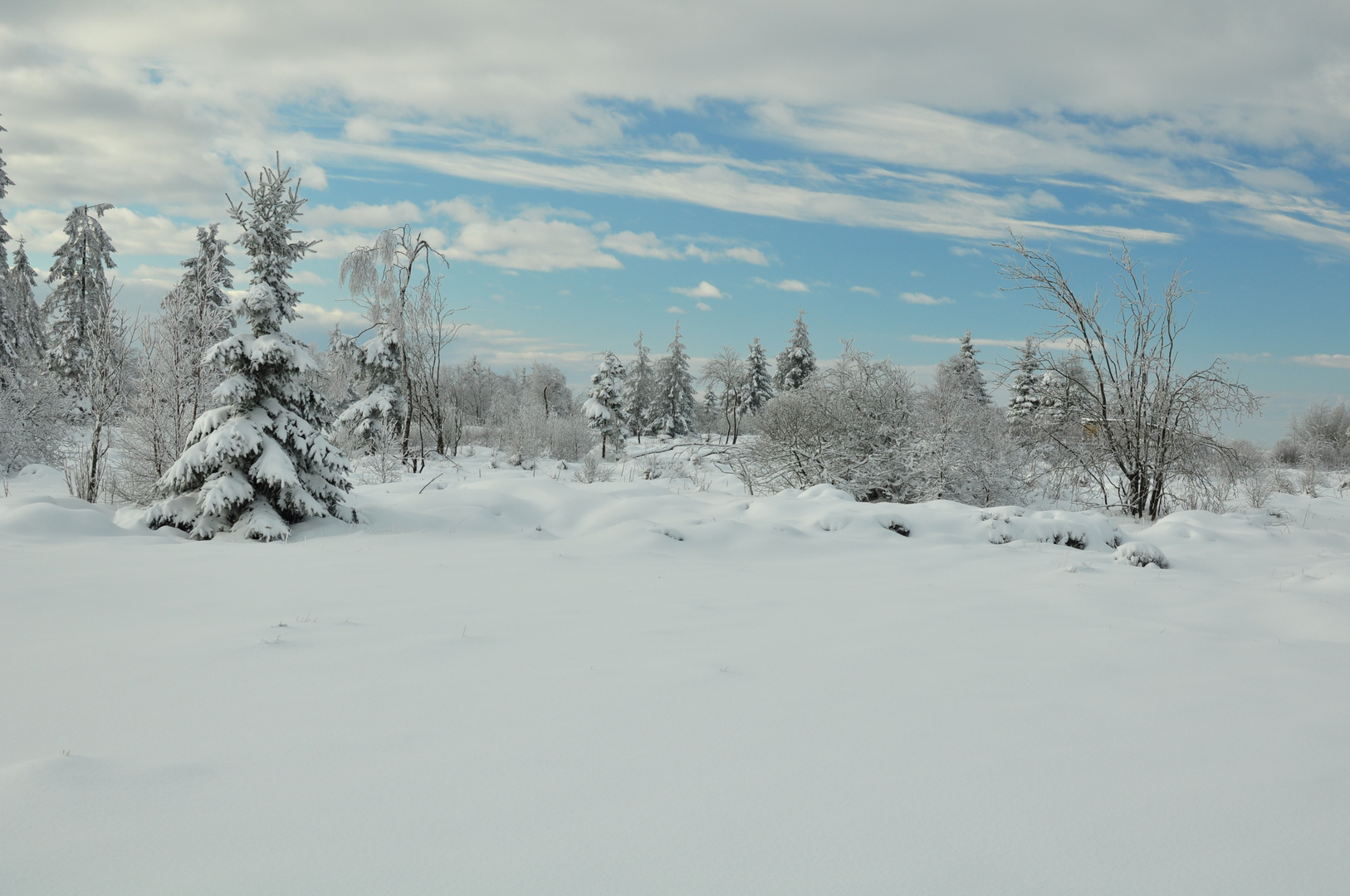 winter im venn 5