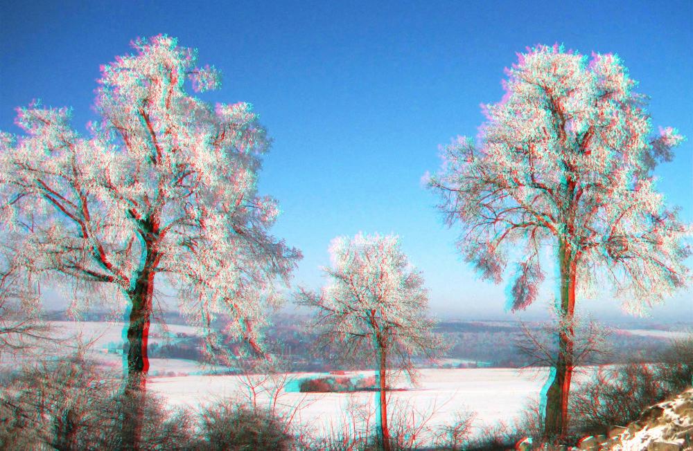 Winter im Vogelsberg 1 (3D-Bild für Rot/Cyan Brille)