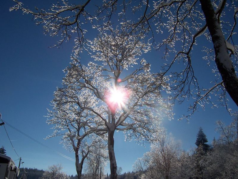 Winter im Vogtland