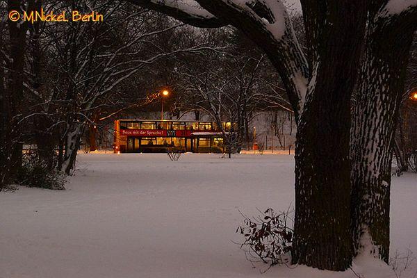 Winter im Volkspark Hasenheide in Berlin