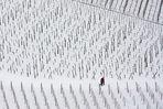 Winter im Weinberg - spazieren gehen
