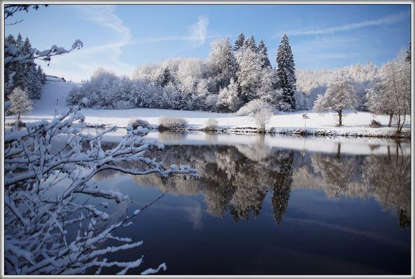 Winter im Welzheimer Wald