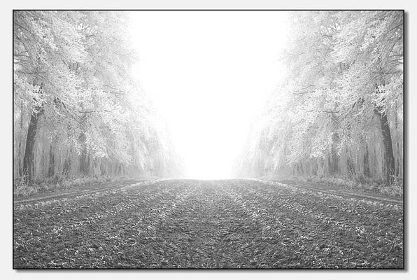 Winter im Westerwald II
