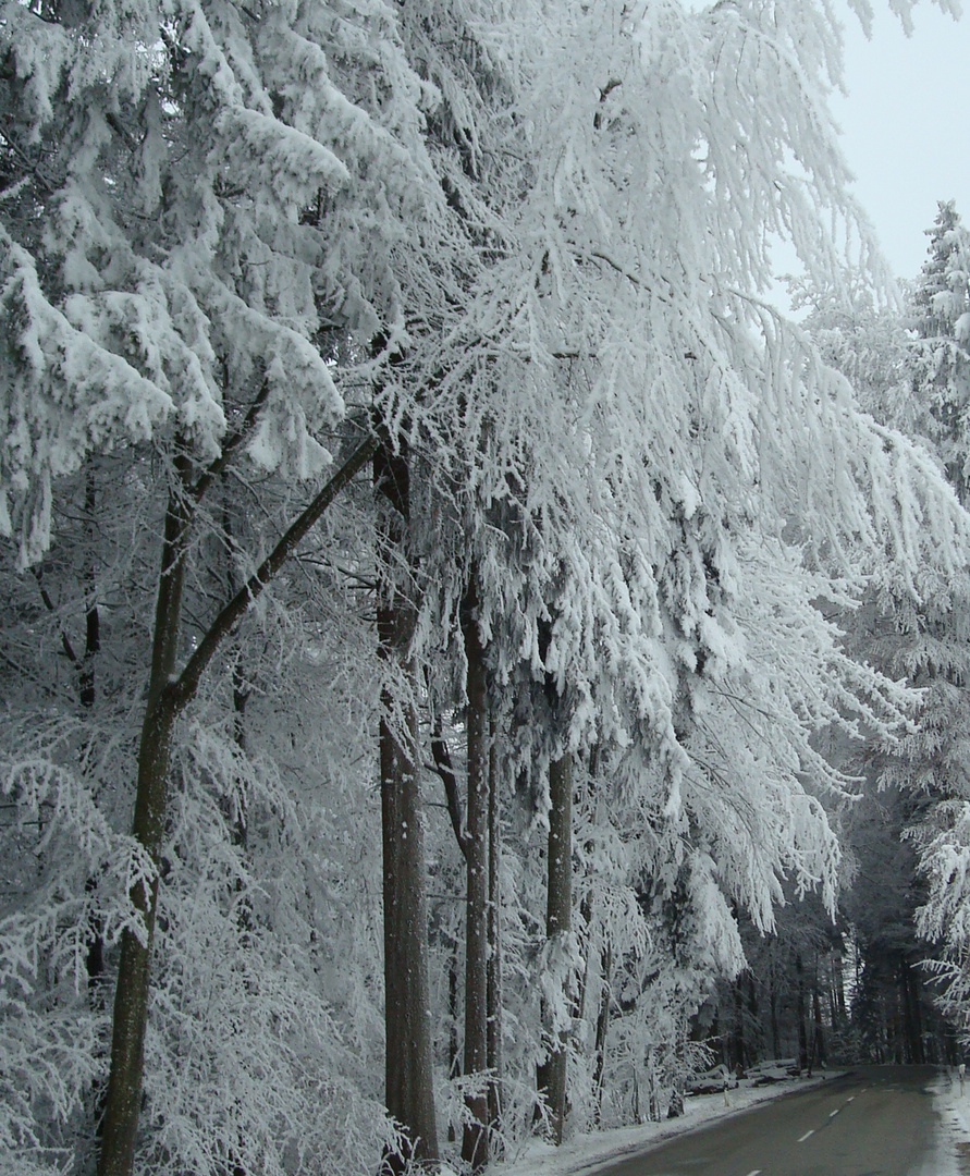 Winter immer noch