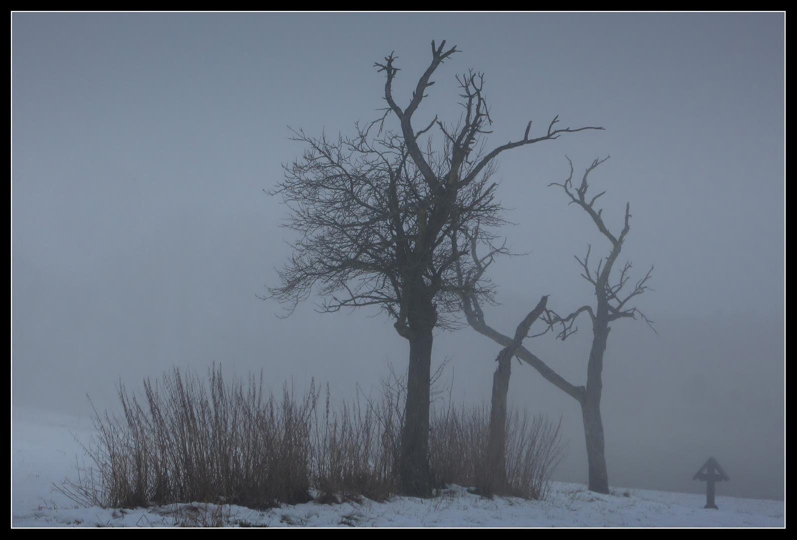 Winter - Impression 1