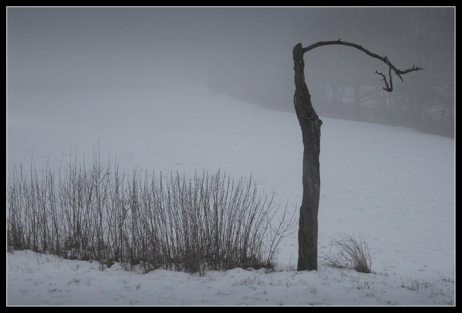 Winter - Impression 2