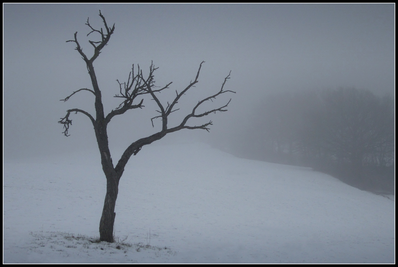 Winter - Impression 3