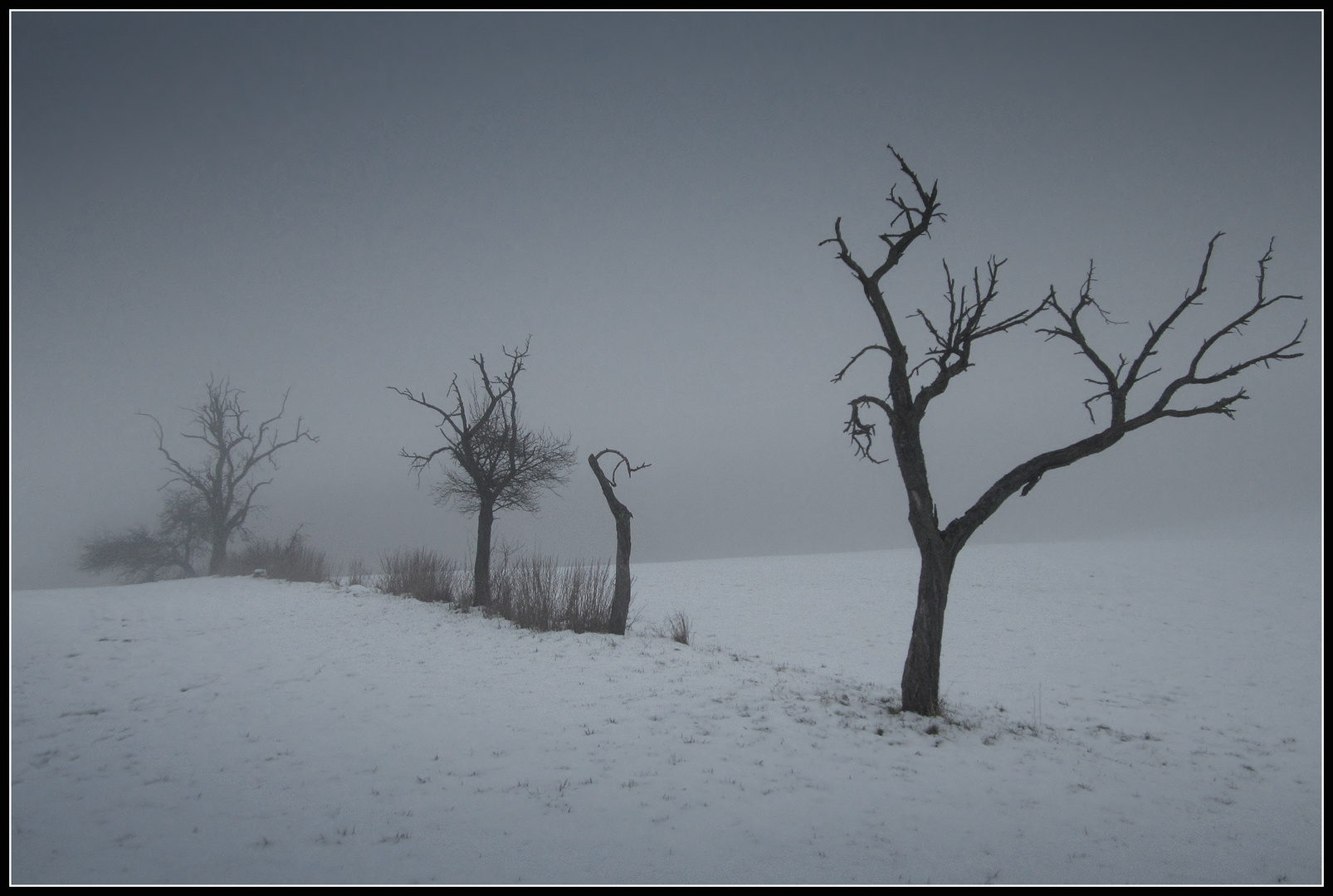 Winter - Impression 4