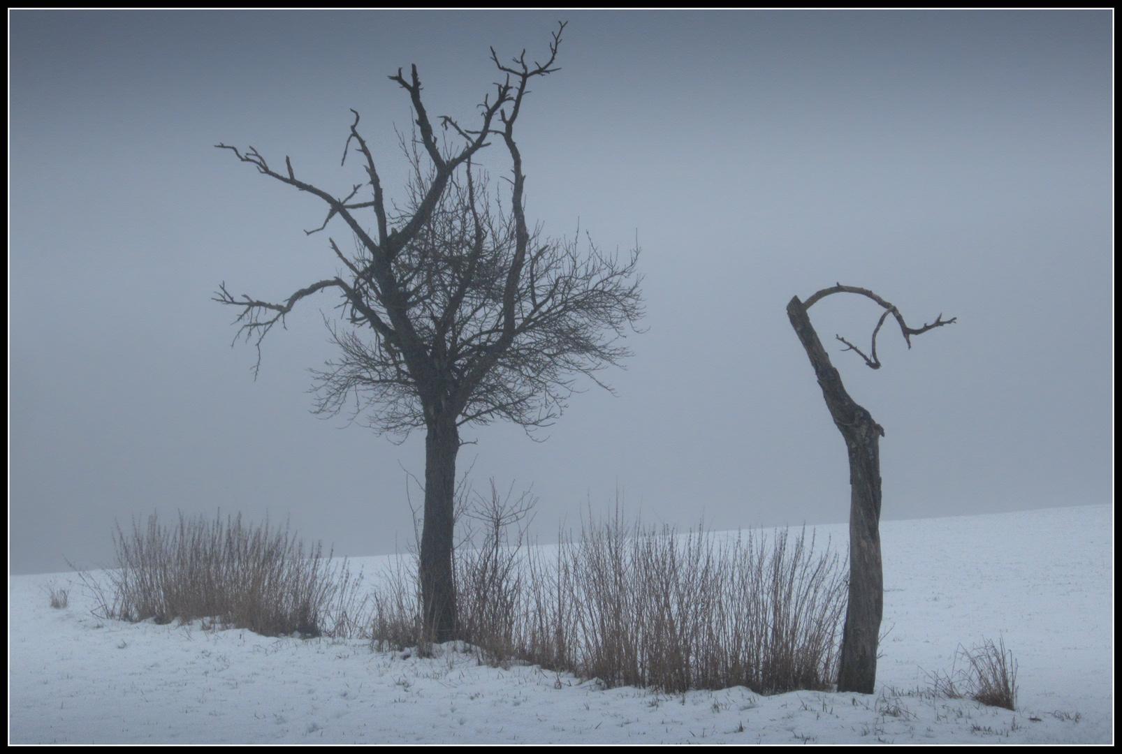 Winter - Impression 5