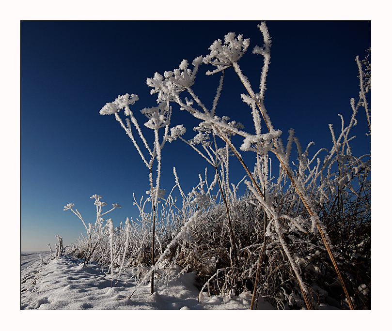 Winter Impressionen - 4.
