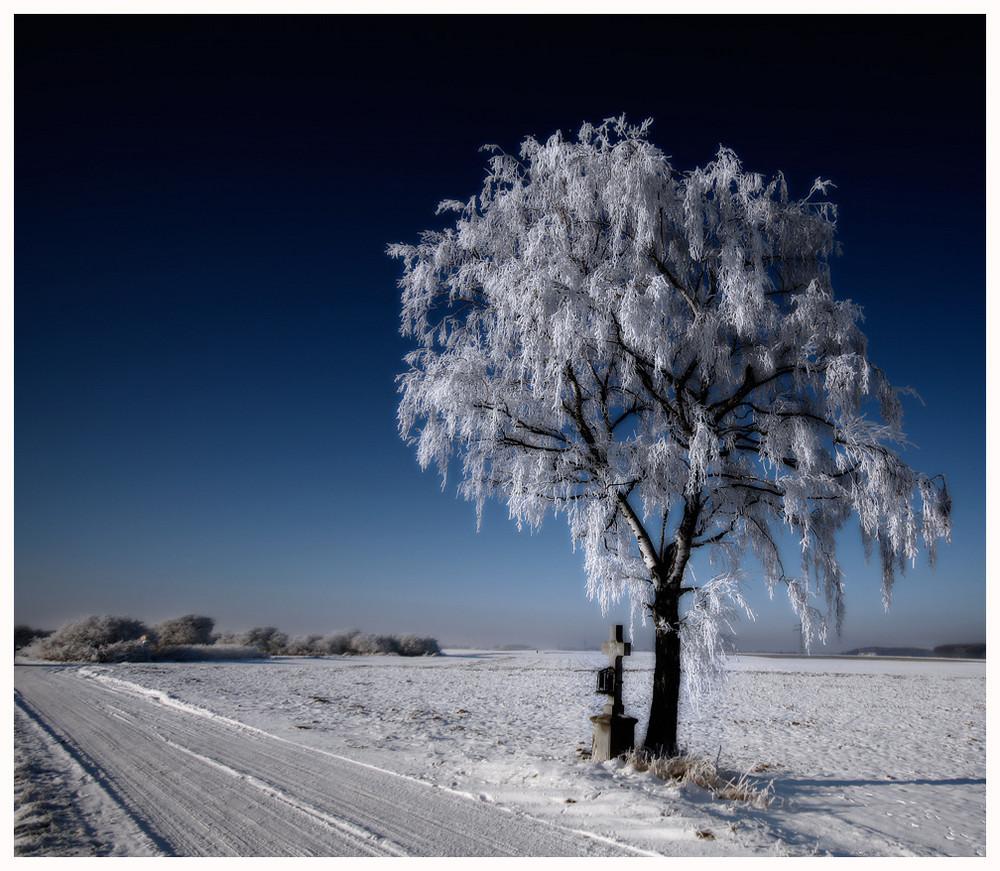 Winter Impressionen - 6.