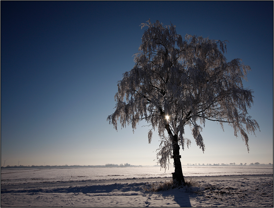 Winter Impressionen - 8. und letzte.