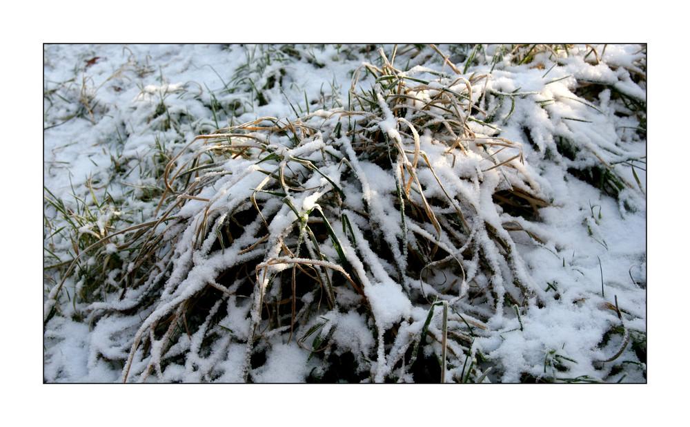 Winter-Impressionen V