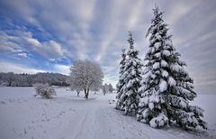 Winter in ...