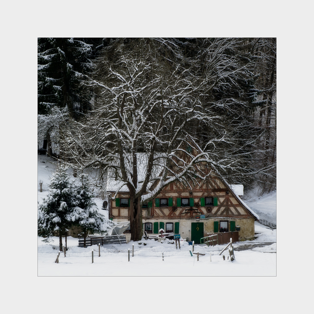 Winter in Algersdorf II