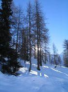 Winter in Austria 2