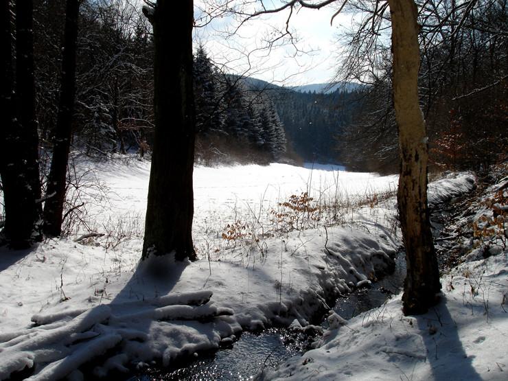 Winter in Bad Reinhardshausen
