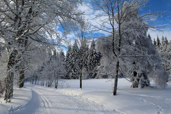 Winter in Bayerische Wald