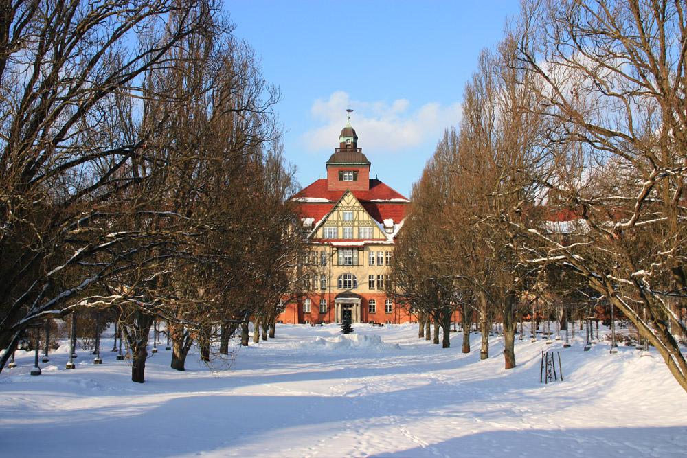 Winter in Beelitz