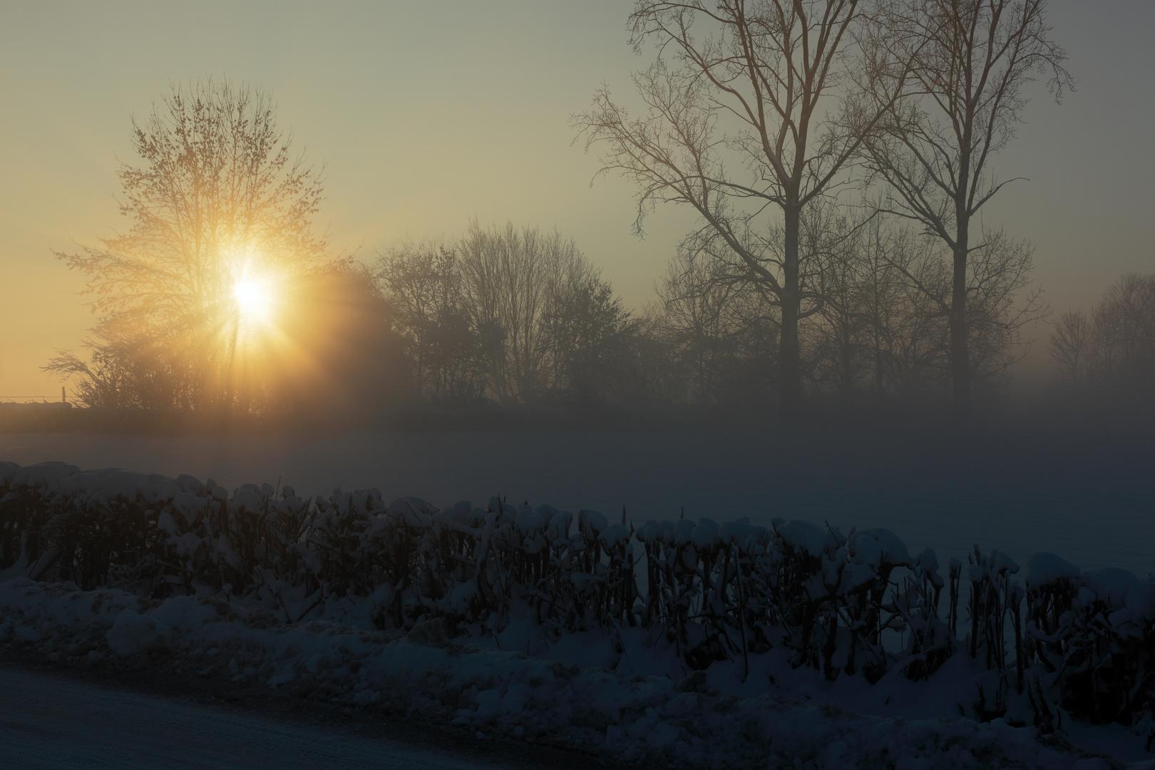 Winter in Belgien 2