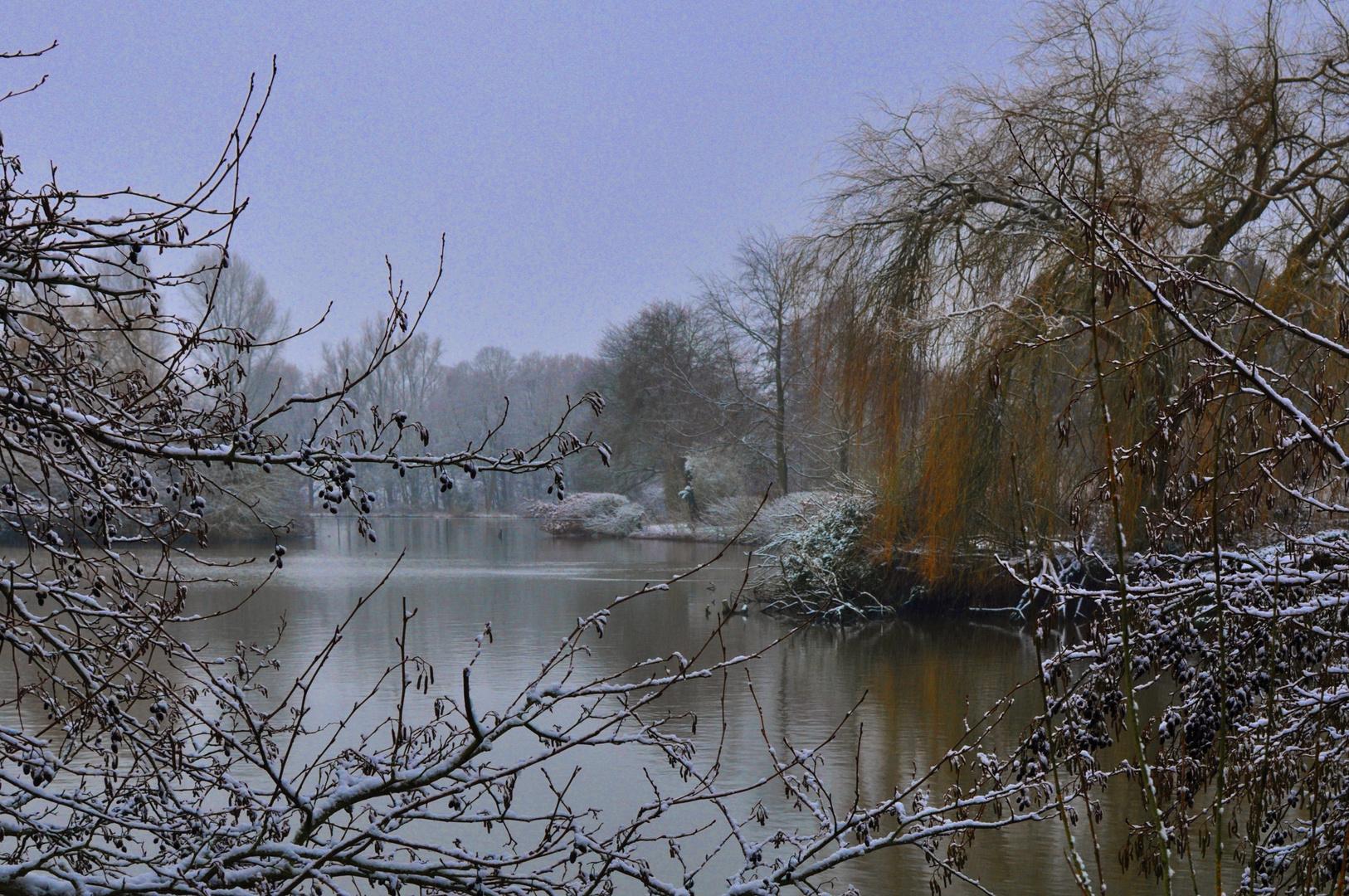 winter in belgique