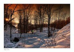 Winter in Bergen - 5