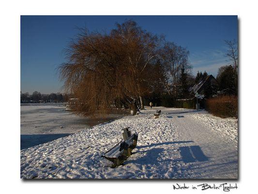 Winter in Berlin-Tegelort