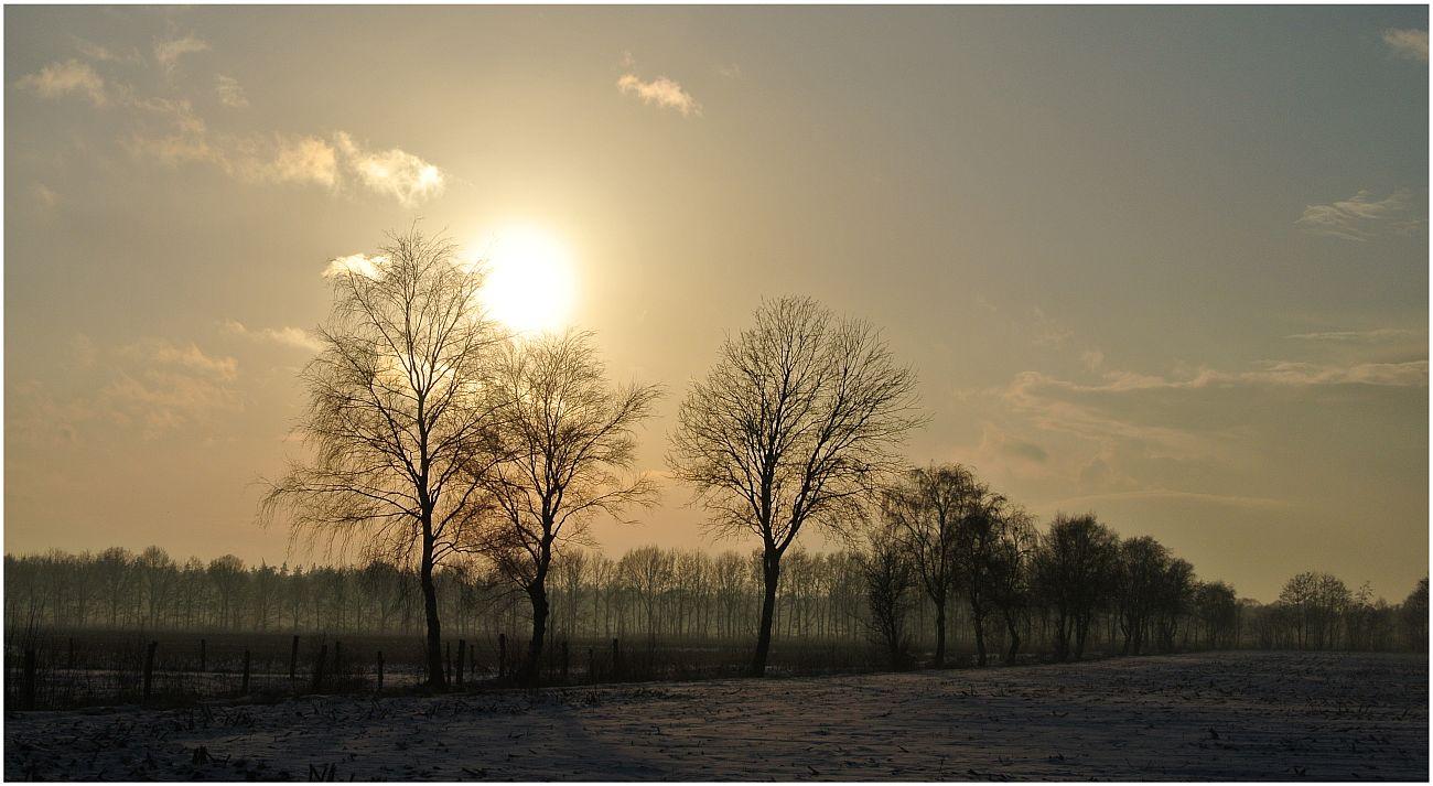Winter in Bösel
