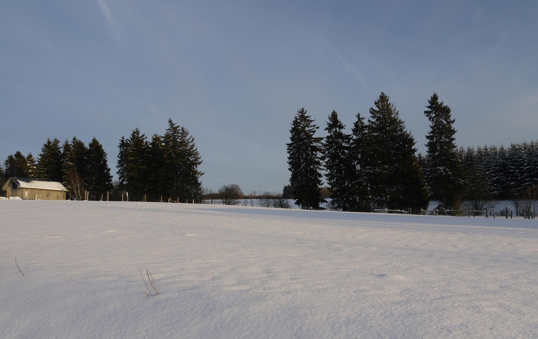 Winter in Büllingen 1