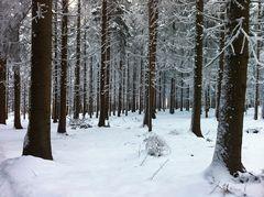 Winter in Davidschlag