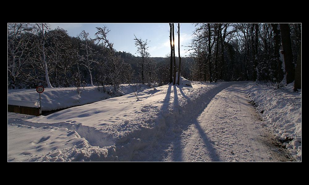 Winter in der Au