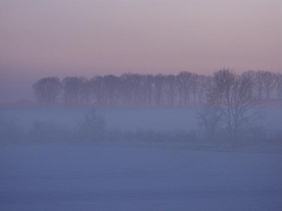 Winter in der Lüneburger Heide