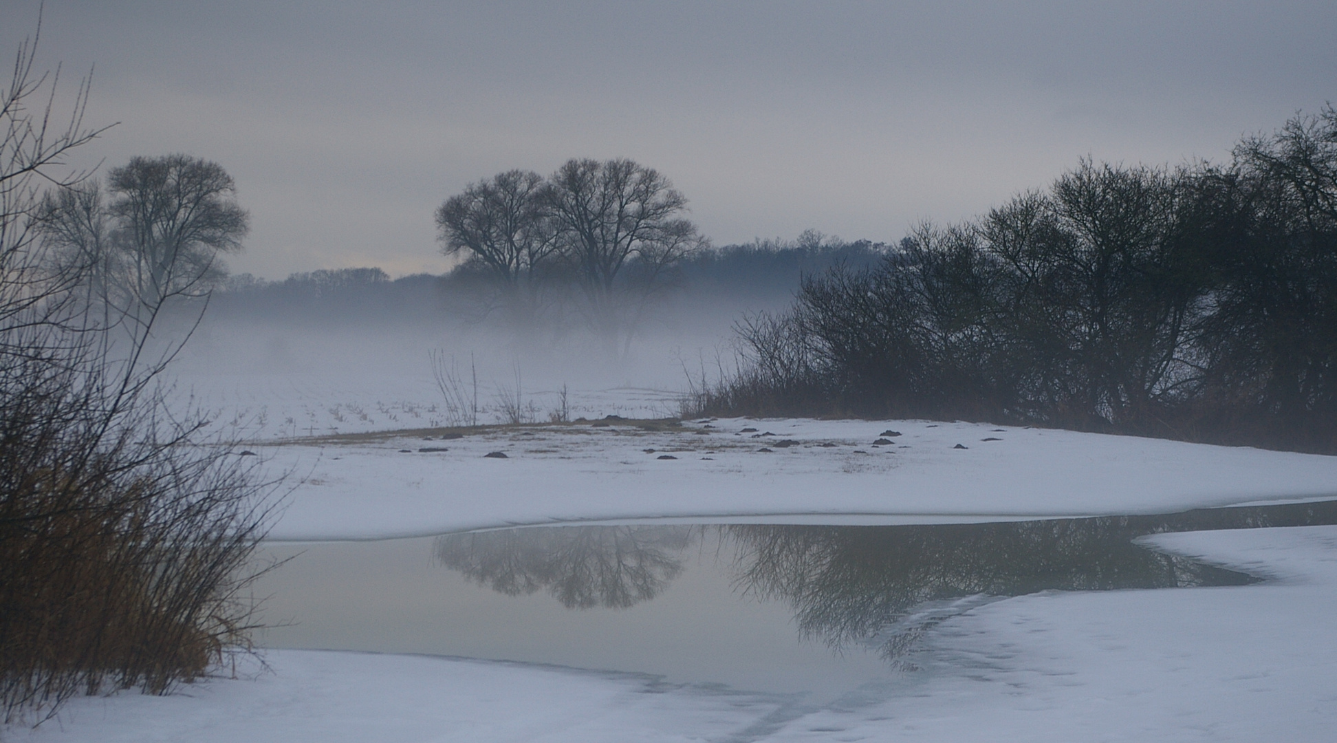 Winter in der Mainaue II