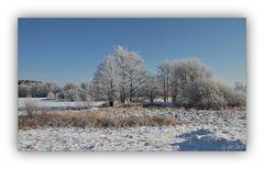 Winter in der Schneckengrüner Heide - 6