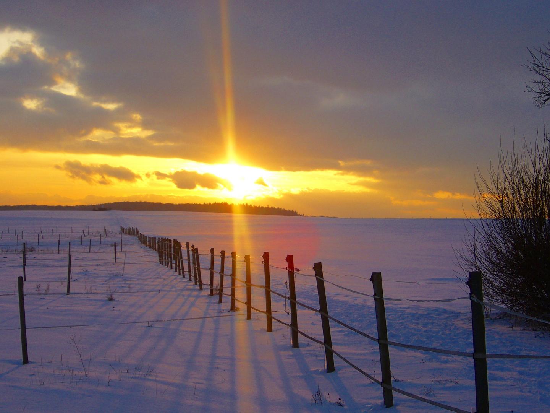 Winter in der Wetterau