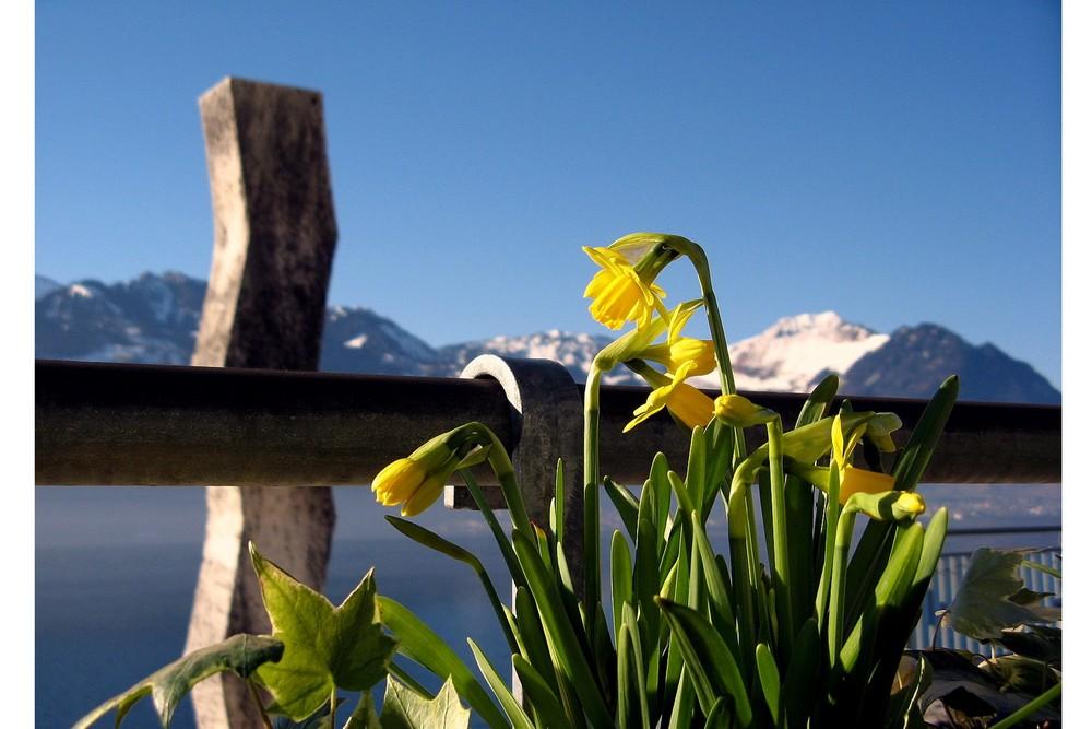 Winter in der Zentralschweiz, 24. Februar 08