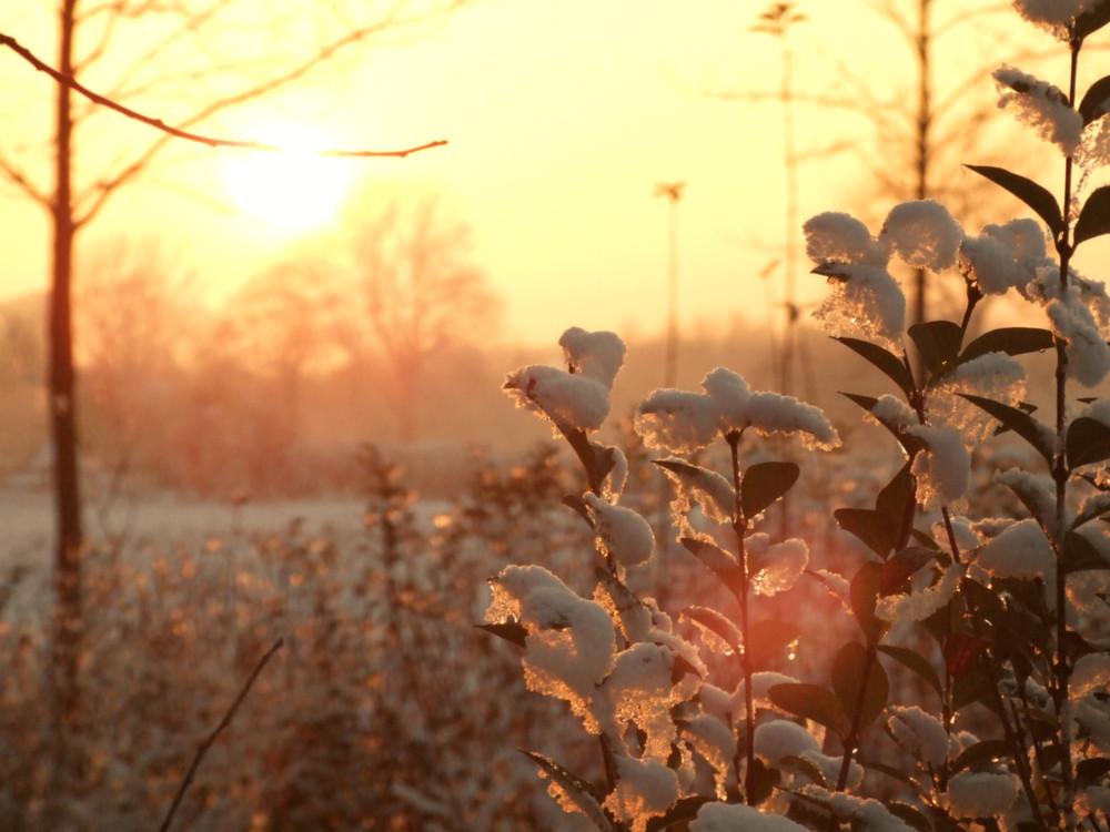 winter in deusen