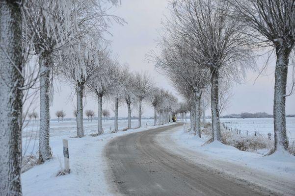 Winter in Dithmarschen