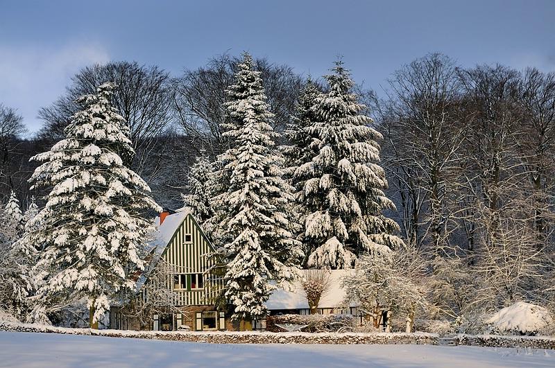 Winter in Dornberg