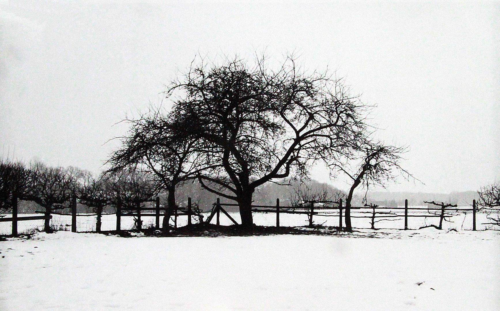 Winter in Dünsen