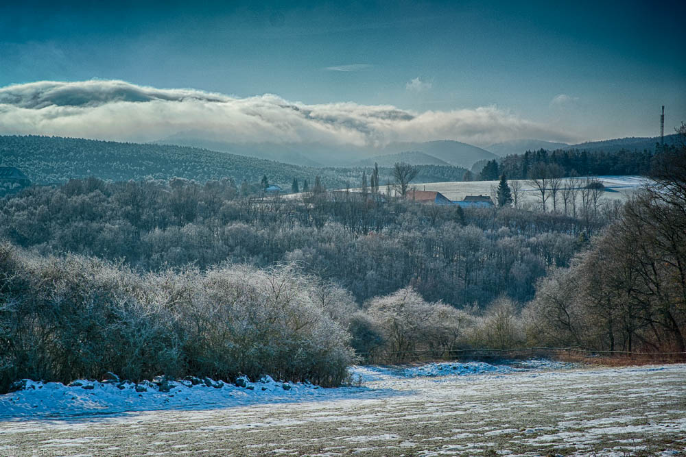 Winter in Feld und Wald