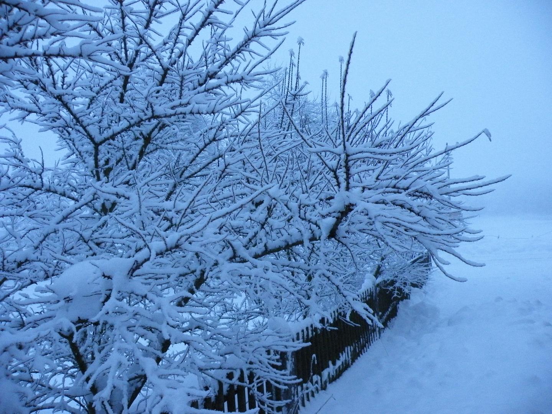 Winter in Gembeck