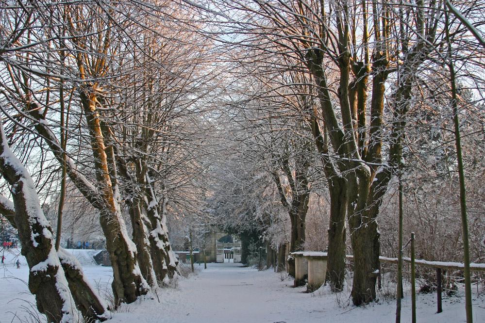 Winter in Gemen