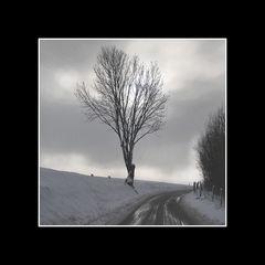 Winter in Gulpen