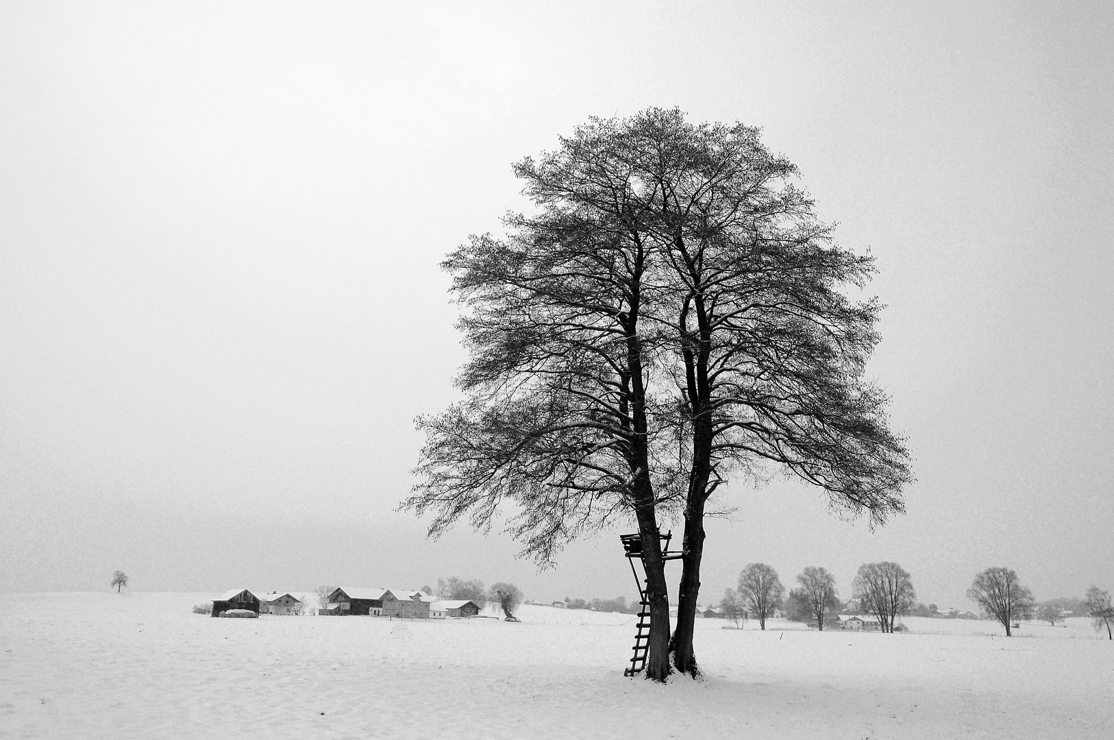 Winter in Haarmoos